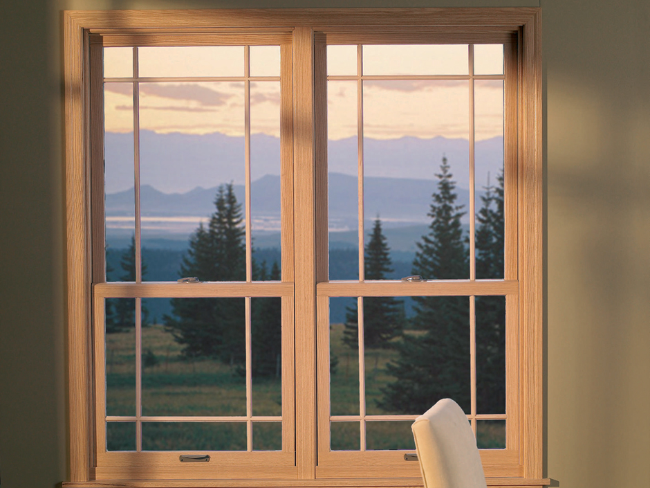 Double Hung Feature Window 5